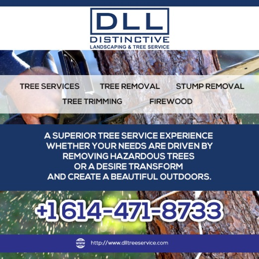 Tree Services Columbus Ohio.jpg